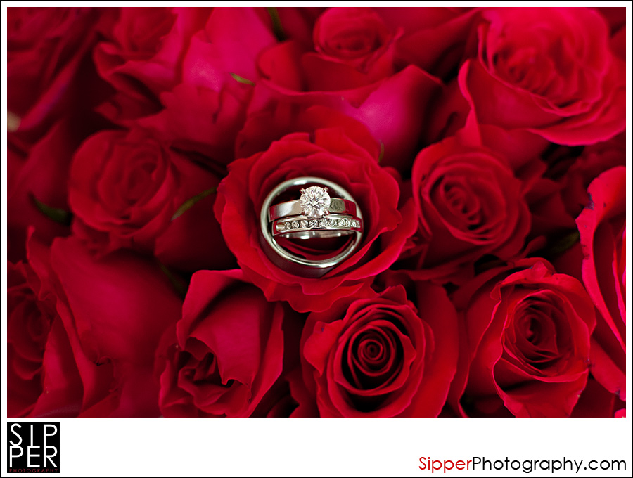 Wedding Rings on Hot Pink Roses
