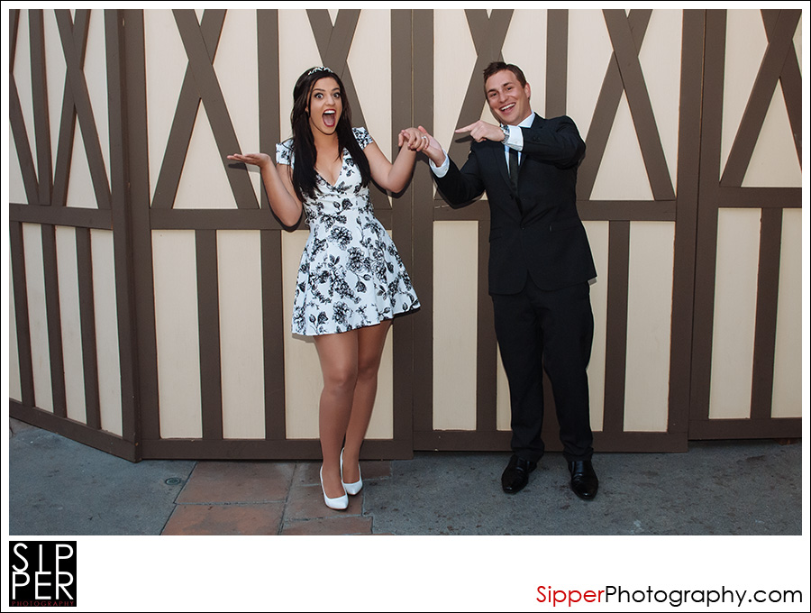 disneyland_proposal_portrait