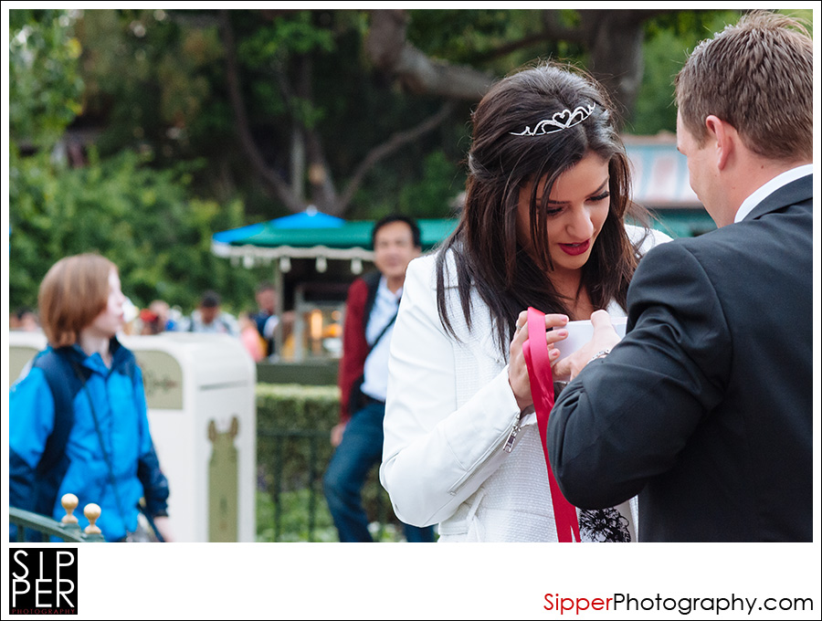 glass_slipper_proposal_disneyland