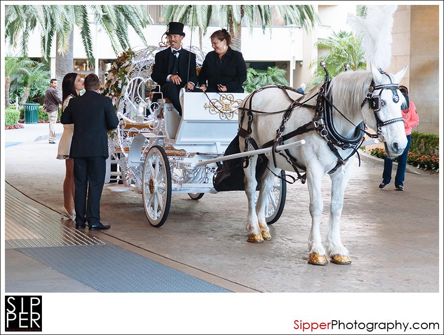horse_drawn_carriage_anaheim