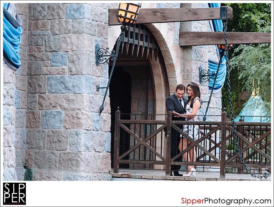 sleeping_beauty_castle_proposal_1