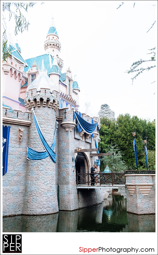 sleeping_beauty_castle_proposal_2