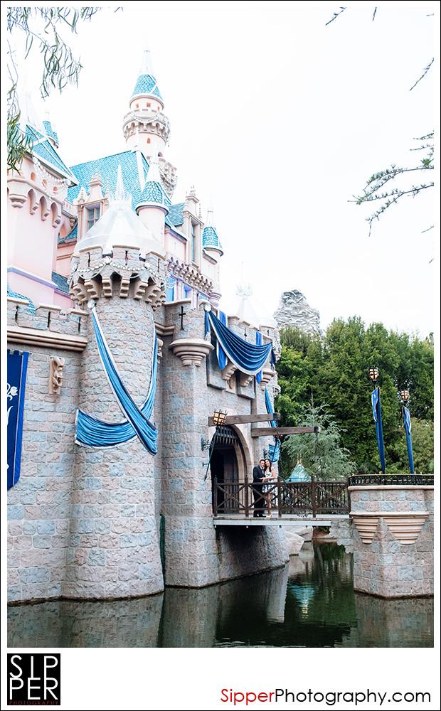 sleeping_beauty_castle_proposal_2