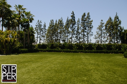 The Backyard lawn area at Hotel Irvine